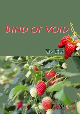 『Bind of Void』